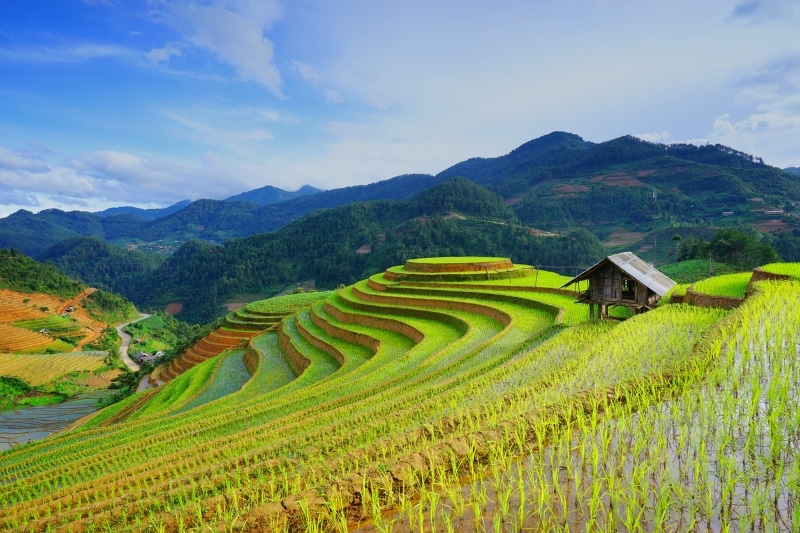 ADB Announces USD 2 Million Grant for Climate-Smart Agriculture and USD 50 Million to Renewable Energy Company