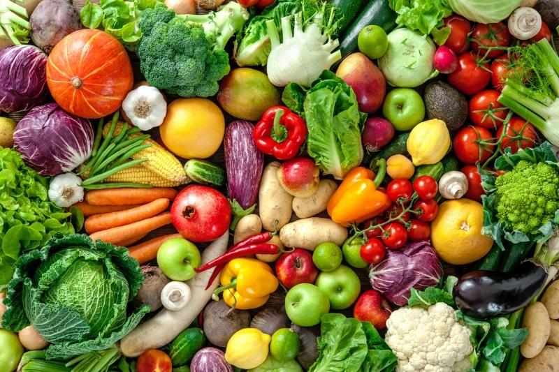 Bayer Builds a Vegetable Farm in Laguna